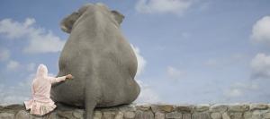 elefantebambina
